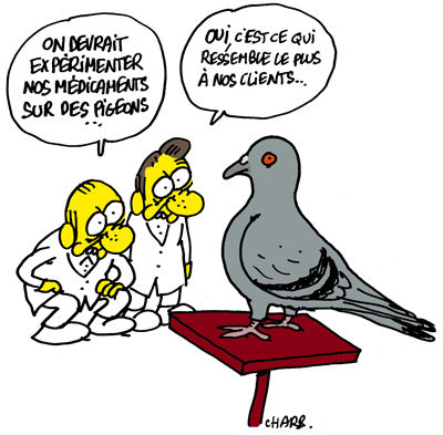 Charlie-Hebdo-Pigeon-by-Charb3