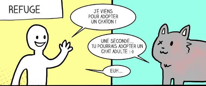 Adopter chat gratuitement paris