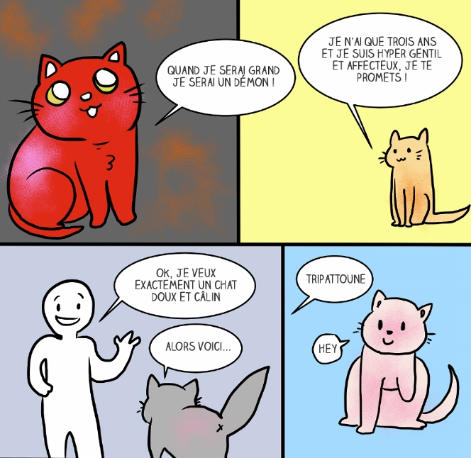 adopter-chat-3