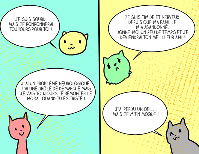 adopter-chat-5