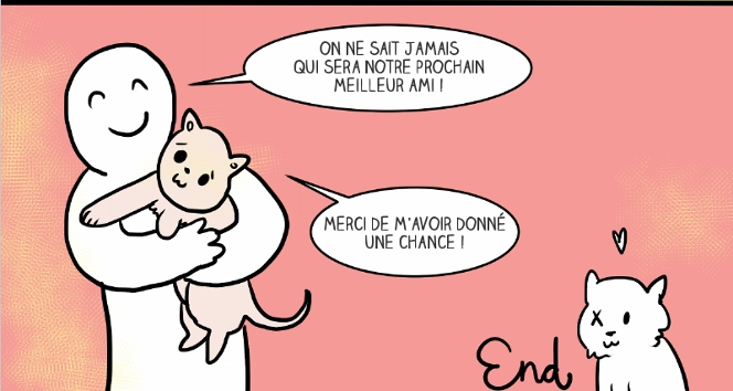 adopter-chat-7