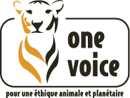 Logo_One_voice